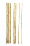Bambus-Stab