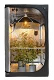 Secret Jardin DY60 Daisy Reflector R1.00